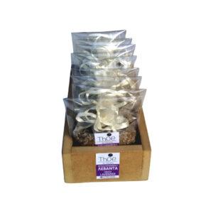 Αποξηραμένη λεβάντα 10γρ – Ξύλινη κασετίνα 20 τεμαχίων THOE | CALLISTA - NATURAL HELLENIC PRODUCTS100%